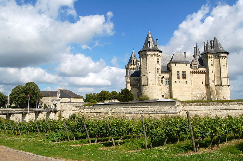 Castles Often Complement Vineyards in France's Majestic Loire Valley.
