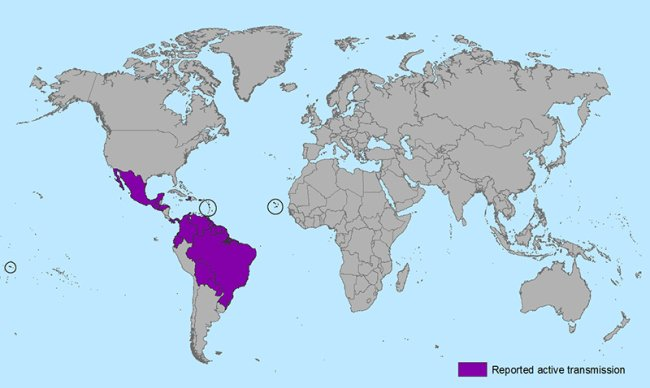 The Zika Virus is spreading rapidly through Latin America and South America
